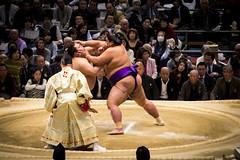 Sumo in Osaka-9 (Rodrigo Ramirez Photography) Tags: japan amazing traditional professional tournament osaka sumo yokozuna ozeki makuuchi hakuho sumotori sumotournament maegashira reikishi harumafuji topdivision