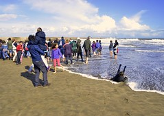 Sorpresa (Dechucho) Tags: people espaa beach kids andaluca spain sand gente huelva wave playa nios arena ola breakwater ayamonte espign islacanela puntadelmoral