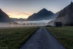 On the way... (MC-80) Tags: mist misty fog sunrise austria tirol sterreich nebel sonnenaufgang tyrol mistysunrise heiterwang heiterwangersee nebelstimmung