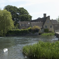 Fairford Mill Pond (Nigel Musgrove-1.5 million views-thank you!) Tags: mill swan pond cygnet cotswolds fairford