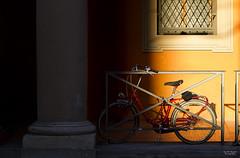 Tramonto (Ricardo Alguacil) Tags: sunset orange sun sol bike canon atardecer eos italia tramonto 7d bologna bici ricardo sole naranja bolonia arancione bicicletta 2470 alguacil ricardoalguacil