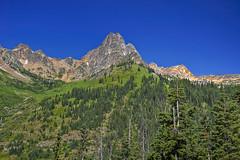 Verdigris (El Justy) Tags: trees summer usa mountains nature washington nationalpark amazing unitedstates pacificnorthwest peaks pnw northcascades northcascadesnationalpark