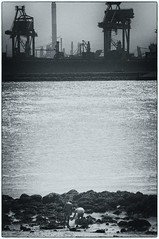 Humanity (Jan Bakker) Tags: playingkids harbour hoekvanholland cranes rotterdam