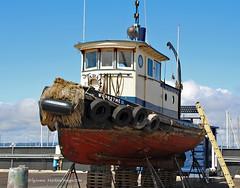 9822_Adaline (lg evans Maritime Images) Tags: tugboat tug lge adaline seattlewa onthehard lgevans maritimeimages ©lgevans seaviewwest