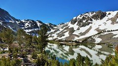 20160625_091843 (lovz2hike) Tags: lovz2hike duck lake pass trail barney pika mono county mammoth lakes coldwater campground fishing hiking backpacking wonderlust fresno inyo sierra nevada john muir wilderness