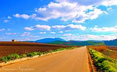 Country Road (Francesco Impellizzeri) Tags: landscape sicily sicilia trapani