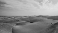 Les Dunes de Maspalomas (B&W) (Edrysark) Tags: blackandwhite grancanaria europe noiretblanc dunes espana espagne