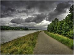 River walk (Luc V. de Zeeuw) Tags: clouds cloudy footpath gras noord papendrecht river tree water windy zuidholland netherlands