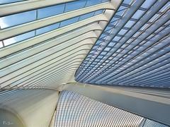 Lige-Guillemins (pen3.de) Tags: liege lttich penf zuiko1240 belgien station dach roof architektur calatrava linien licht schatten linescurves farben colors photographie olympus