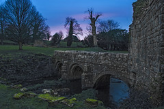 Abbey ruins at dusk (ginger_scallywag) Tags: xmas uk trees winter england lake tree tower abbey silhouette photoshop canon picnic dusk deer swans watergarden georgian fountains nationaltrust northeast stmaryschurch christmascake cs6 templeofpiety octagontower fountainshall eos40d moonpond tamron17300