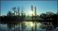 0157 guipry (cbibi35) Tags: soleil breizh 35 matin bzh illeetvilaine vilaine guipry