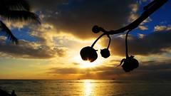 Por do Sol - Hawaii (Tiago Buosi) Tags: sunset sky sun sol hawaii belo halamoana