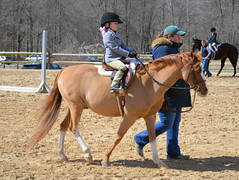 2015-03-22 (68) horse show Upper Marlboro (JLeeFleenor) Tags: girls horses woman caballo cheval photography donna mujer photos femme mulher uma cal frau cavallo cavalo pferd equestrian vrouw kuda alogo equine hest dona thoroughbreds soos hevonen cuddy paard cavall kon koin 馬 wanita häst ceffyl زن 여자 жена лошадь 马 koń faras hestur kvinne 女性 женщина סוס nainen kobieta perd γυναίκα 女子 kvinde حصان žena หญิง konj кон άλογο घोड़ा capall beygir kvinna kadın nő yarraman האישה امرأة жінка pfeerd औरत