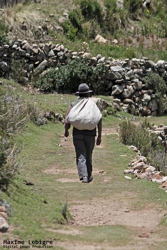Mochilero Boliviano - Isla del sol
