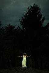 falling (Sophie Barlow) Tags: wood texture forest photoshop dark photography model dress fineart curves dream iso falling conceptual pure levels conceptualart conceptualphotography brookeshaden