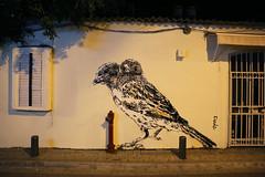 Tel Aviv (CarolineBach) Tags: street art israel tel aviv