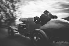 FIAT-1918-2