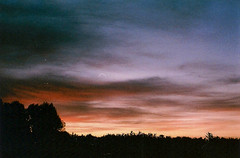 07 (muhself) Tags: california camping camp music art film festival analog 35mm vintage minolta arts 101 valley rave coachella mm miranda 35 indio srt101 srt sensorex