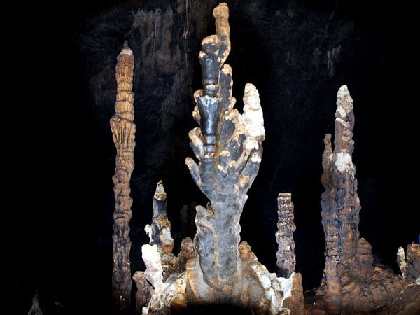 Những tạo vật thú vị trong hang
