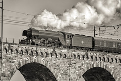 Flying Scotsman Crossing Royal Border Bridge (Colin Myers Photography) Tags: bridge colin train vintage photography flying smoke border royal loco steam locomotive berwick steamtrain myers scotsman flyingscotsman royalborderbridge colinmyersphotography wwwcolinmyerscom