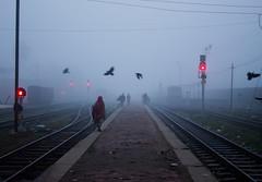 Winter morning (Towfiq Chowdhury) Tags: railroad morning winter people work walking railway going passing bangladesh maymonshing