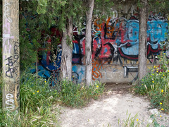 P1150392.jpg (jameswrodriguezphotography) Tags: streetart france art cars graffiti bright vibrant parking spraypaint provence avignon