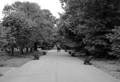 Timeless (phoebe.horner) Tags: park trees people white black colour tree monochrome fence landscape photography landscapes photo photographer view edited greenwich royal parks fences squirrell cutty sark