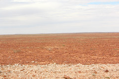 Sturt's Stony Desert (Arthur Chapman) Tags: desert australia queensland outback arid outbackqueensland gibber sturtsstonydesert geo:country=australia geocode:method=gps geocode:accuracy=100meters betoota birdsvilledevelopmentroad geo:alt=63meters