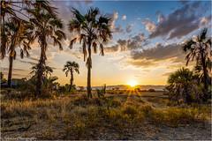 Maramboi Tented Camp (schuetz.photography) Tags: africa sunset camp landscape sony sigma safari afrika tansania maramboi tennted