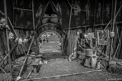 envers de l'Etre (Patrice Dx) Tags: forest animation enfants fte parc jeux festivalsupermouche