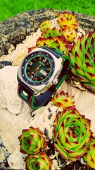 Seiko Recraft & Pattini Straps (werkmania.hu) Tags: green nature leather mobile japan hungary watch timepiece strap magyar seiko hun pattini xiaomi snkm97
