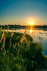 Saaleaue bei Halle (piechsebastian) Tags: sunset sun lake landscape see licht nikon sonnenuntergang landschaft halle hdr weitwinkel hallesaale d600 sachsenanhalt spfotografie