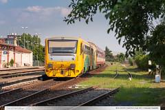 814.103-8 | Os4314 | tra 341 | Uhersk Hradit (jirka.zapalka) Tags: summer train cd os uherskehradiste stanice rada814914 trat341