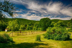 Back-Yard-View-in-June (desouto) Tags: flowers sky nature water clouds stream stones lakes ponds hdr