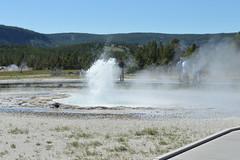 Sawmill Geyser, Yellowstone (David A's Photos) Tags: yellowstonenationalpark yellowstone geyser sawmill yellowstonetrip ugb uppergeyserbasin