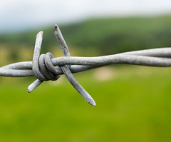 Barbed wire (Phil Royall) Tags: macro wire barb barbed x100 x100s
