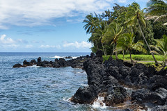 End of the Earth (james.froumis) Tags: d750 24120mmvr maui hana keanae peninsula volcanic palm trees ocean