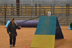 agility268 (jaimekay16) Tags: dog training austin agility k9 xpress nadac k9x