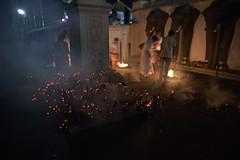 (Himash De Silva) Tags: light elephant canon temple fire eos lights sticks long exposure candles raw buddha buddhist low statues ii pooja srilanka f28 6d 2470mm 2470 anuradapura pahan ruwanvalisaya