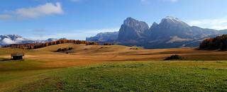 Seiser Alm - Alpe di Siusi  _MG_2078m(1)
