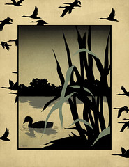 The Ugly Duckling (taschaka) Tags: art illustration duckling ugly tale andersen the