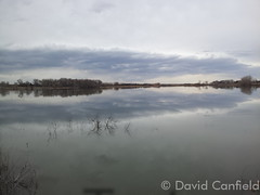 March 12, 2015 - Reflections on McKay Lake in Broomfield. (David Canfield)