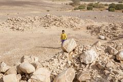 IMG_0124 (Alex Brey) Tags: castle archaeology architecture ruins desert ruin mosque medieval jordan khan residence islamic qasr amra caravanserai qusayramra umayyad quṣayrʿamra