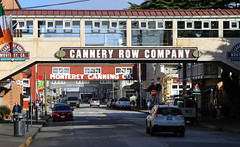 Cannery Row (Gunter Heimlich) Tags: flowers beautiful beauty marina monterey seals pacificgrove loverspoint