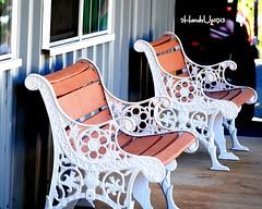 "Have a seat_0153 (2HandzUp1913) Tags: autumn food orange brown green fall colors leaves yellow fruit bench season nikon crafts tan entertainment 2handzup1913 ""applehill"" ""eldoradohills"" ""hanginoutwithmymentee"""