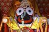 (Daniel Leckenby) Tags: india beautiful special adventure holy spiritual hindu realisation