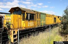 12 January 2015  2123 East Tamar (RailWA) Tags: tasmania 2123 locos stored tasrail railwa philmelling