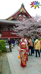 Spring in Tokyo=2 (tiokliaw) Tags: world friends people holiday colour travelling nature beautiful beauty digital photoshop wonderful island temple interesting fantastic nikon scenery holidays colours exercise earth expression quality perspective images explore walkway winner greatshot imagination sensational digitalcamera greetings colourful discovery finest overview creations excellence addon highquality inyoureyes teamworks digitalcameraclub supershot recreaction hellobuddy mywinners mywinner worldbest anawesomeshot aplusphoto flickraward almostanything thebestofday sensationalcreations blinkagain burtalshot