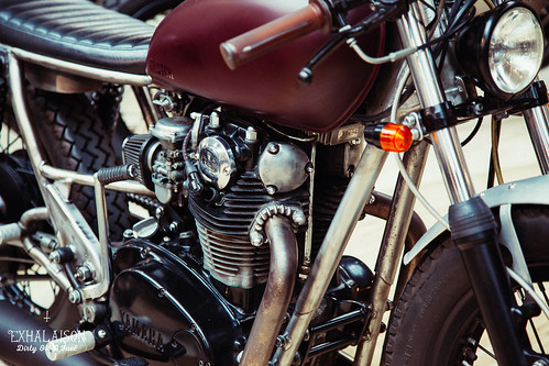The_Bike_Shed_2015©exhalaison-41.jpg