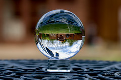 My upside down world! (Sue_Shaw) Tags: reflection canon garden upsidedown reverse canoneos crystalball canon60d